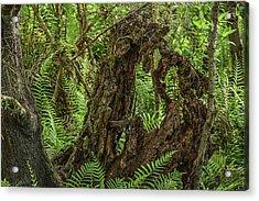Nature's Sculpture Acrylic Print