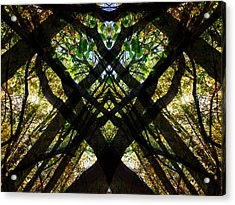 Natures Stain Glass Acrylic Print