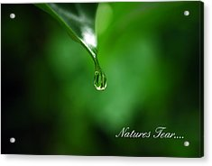 Natures Tear Acrylic Print
