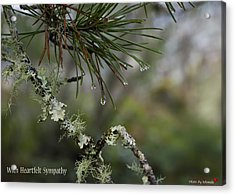 Nature's Tears Acrylic Print