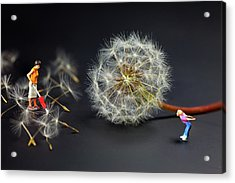 Acrylic Print featuring the painting Naughty Girl Playing Dandelion Little People Big World by Paul Ge
