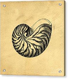 Acrylic Print featuring the digital art Nautilus Shell Vintage by Edward Fielding