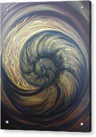 Nautilus Spiral Acrylic Print