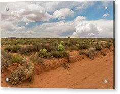 Navajo Reservation Acrylic Print