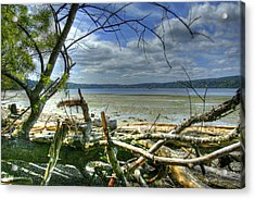 Near Port Gamble Acrylic Print