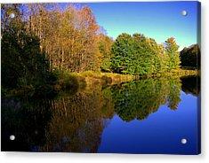 Near To Monticello Ny Acrylic Print