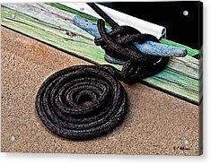 Neatly Tied Acrylic Print by Christopher Holmes