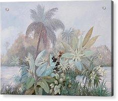 Nebbia Luminosa Acrylic Print