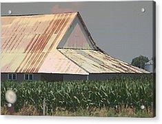 Nebraska Farm Life - The Tin Roof Acrylic Print