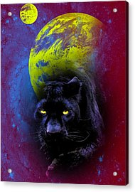 Nebula's Panther Acrylic Print by Swank Photography