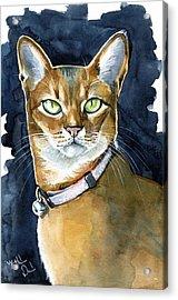 Nefertiti - Abyssinian Cat Portrait Acrylic Print