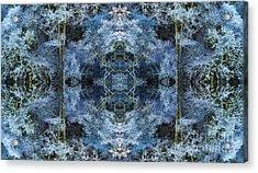Nemeton Acrylic Print by Tim Gainey