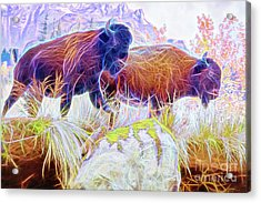 Acrylic Print featuring the digital art Neon Bison Pair by Ray Shiu