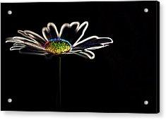 Neon Flower Acrylic Print