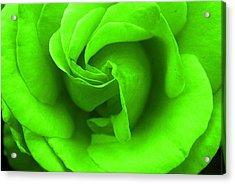 Neon Green Rose Acrylic Print