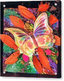 Neon Lights Butterfly On Boxed Canvas Acrylic Print by Anne-Elizabeth Whiteway