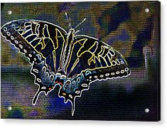Neon Swallowtail Butterfly Acrylic Print