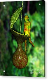 Nepenthes Pixi 2 Acrylic Print by Michael Hallam
