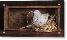 Nesting Bird Still Life II Acrylic Print