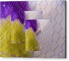 Net Gain II Acrylic Print