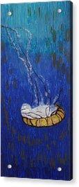 Nettle Jellyfish Acrylic Print
