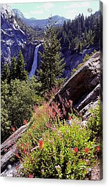 Nevada Falls Yosemite National Park Acrylic Print