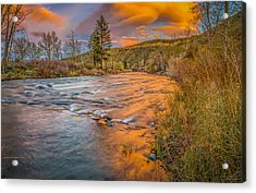 Acrylic Print featuring the photograph Nevada Gold  by Scott McGuire