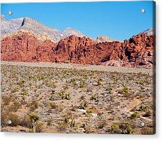 Nevada's Red Rocks Acrylic Print by Rae Tucker