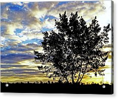 Never Enough Acrylic Print by Melanie Moraga