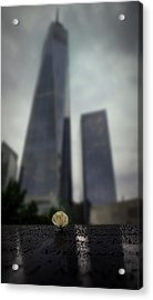 Acrylic Print featuring the photograph Never Forget by Ryan Smith