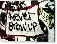 Acrylic Print featuring the photograph Never Grow Up by Terry Rowe
