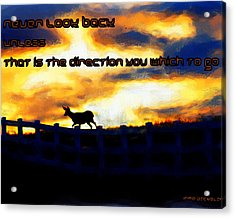 Never Look Back Unless Acrylic Print by Irma BACKELANT GALLERIES