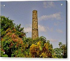 Nevis Sugar Mill II Acrylic Print by Louise Fahy