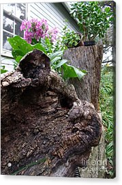 New And Old Acrylic Print by The Stone Age