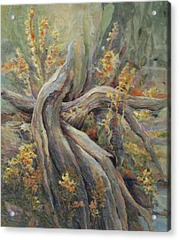 New Beginnings Acrylic Print by Don Trout