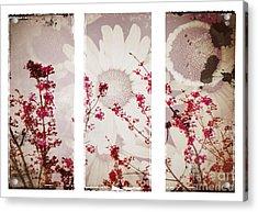 New Beginnings Acrylic Print