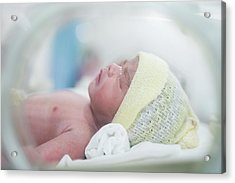 New Born Baby In Hospital After Delivery Hold In Oven Acrylic Print
