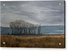 New Buffalo Marsh Acrylic Print by John Hansen