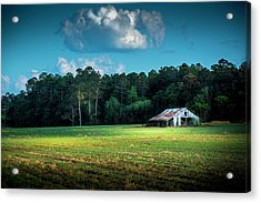 New Crops Acrylic Print by Marvin Spates