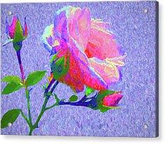 New Dawn Painterly Acrylic Print by Susan Lafleur