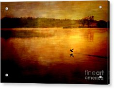 New Day Surrounded By Nature Acrylic Print