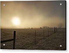 New Day Through The Fog Acrylic Print by Mike Eingle