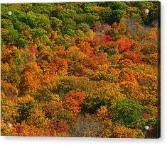 New England Fall Foliage Peak  Acrylic Print by Juergen Roth