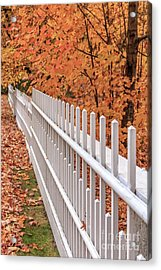 New England White Picket Fence With Fall Foliage Acrylic Print