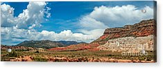 New Mexico Acrylic Print by Gina Savage