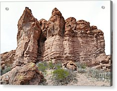Acrylic Print featuring the photograph New Mexico Mountain Canyon by Andrea Hazel Ihlefeld