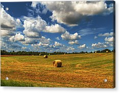 Acrylic Print featuring the photograph New Mowed Hay  by Barry Jones