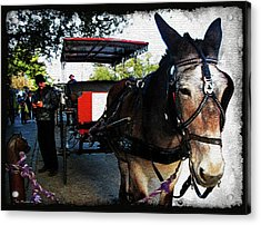 New Orleans Carriage Ride Acrylic Print by Joan  Minchak