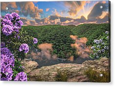 New River Gorge Grandview Acrylic Print by Mary Almond