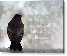 New Years Card Acrylic Print by Lisa Knechtel